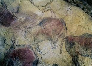 Peinture de bison