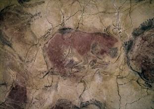 Femelle bison des grottes d'Altamira