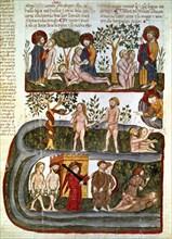 Bible d'Albe: Le péché originel