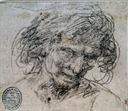 Velázquez, Drawing of a face