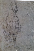 Velázquez, Drawing of a reared up horse