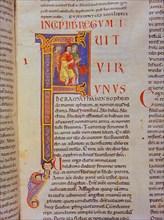Biblia de Avilia, Codex