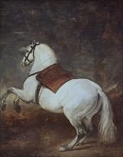 Vélasquez, Cheval blanc