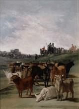 Goya, Retraite de taureaux ou Taureaux au ruisseau