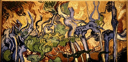 Van Gogh, Racines d'arbres