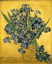Van Gogh, Iris sur fond jaune
