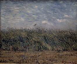 Van Gogh, Champ de blé à l'alouette