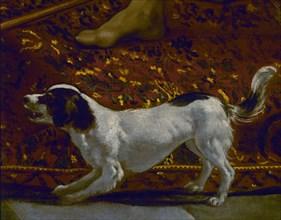 Velasquez, La tunique de Joseph (détail du chien)