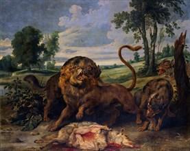 De Vos (1596/1678), Un lion et trois loups