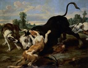 De Vos, Taureau épuisé par des chiens