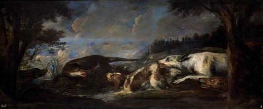 Boel, Loutres attaquées par des chiens