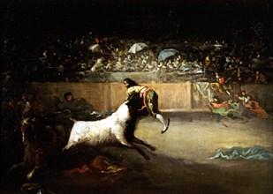 Lucas Velázquez, Un torero encorné