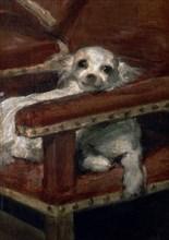 Velasquez, L'Infant Philippe Prosper (détail du chien)