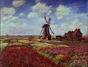 Monet, Champs de tulipes en Hollande