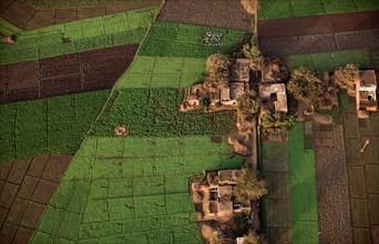 Champs du delta du Nil, vue aérienne