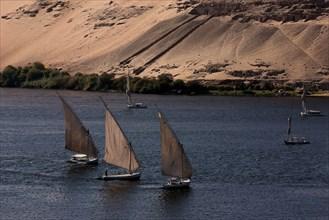 Le Nil dans la région d'Assouan, vue aérienne