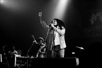 Bob Marley, 1977