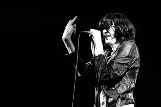 Les Ramones sur scène, 1978