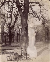 Atget, Statue in the Park of Versailles
