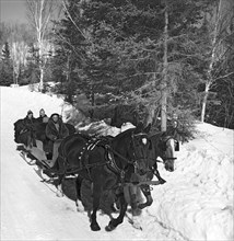 Taking A Sleigh Ride In Canada