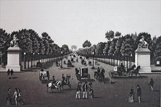 Paris, avenue des champs elysees