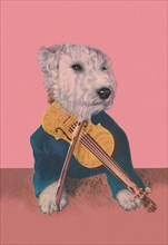 Dog with Violin