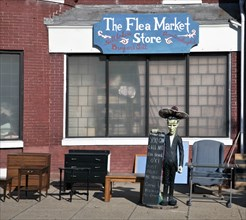 Furniture Flea Market 2010