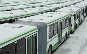 LIAZ-5256 Buses Stand In Rows At The Likino Bus Plant