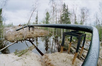 The tyumen area, 1995, the sugmut deposit located among bogsbetween of nadym and purya, is one of the largest on stocks of oil in western siberia, in a picture: an oil pipeline from the sugmutdeposi...