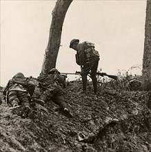 Stereoview WW1