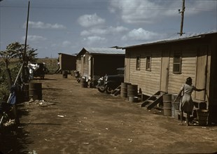 Negro migratory workers by a shack, Belle Glade,