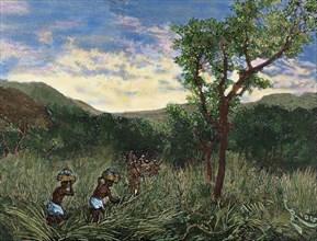 Congo. Expedition of Lieutenant Mizon.