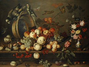 Still Life with Fruits, Shells and Insects.
