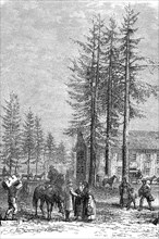 Polling station at Lac Lake Donner in California