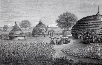 Aboriginal farm from the Dinka tribe