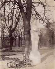 Atget, Statue du parc de Versailles